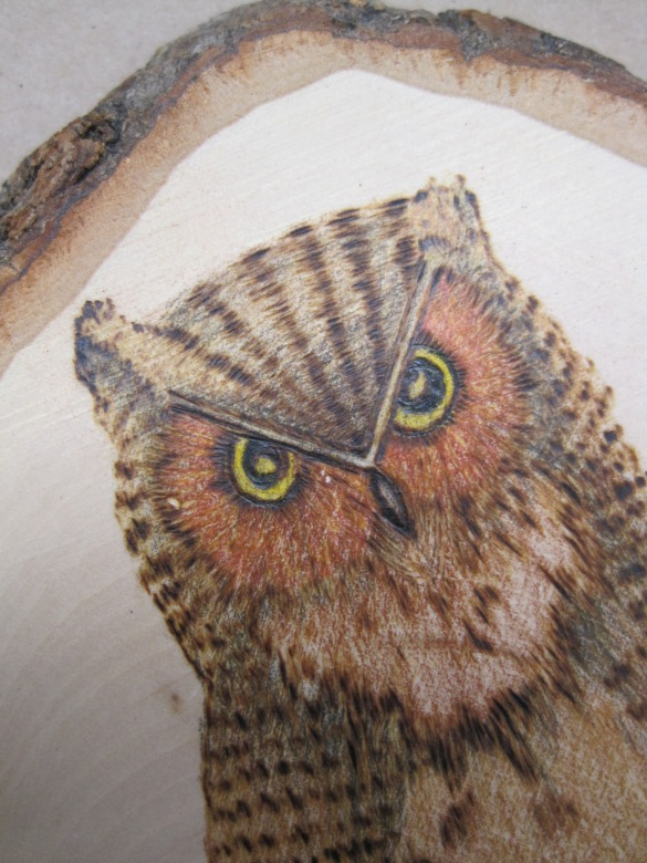 wood varnish colors