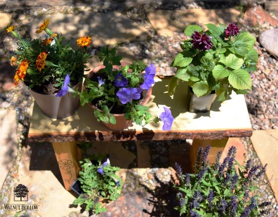 WH Garden Bench Flowers