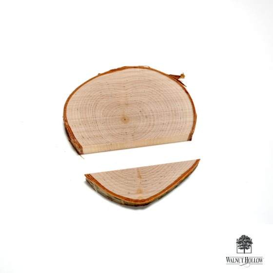 Birch Round Cut for Sconce Assembly by Dana Tatar