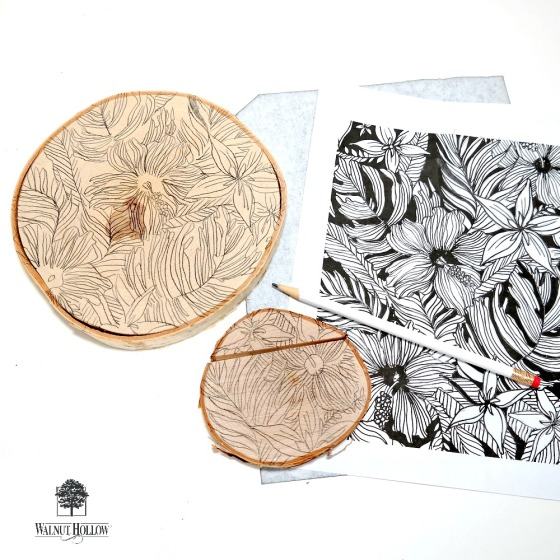 Coloring Book Carbon Paper Transfer by Dana Tatar