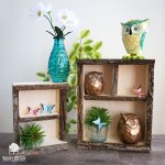 Bark Edge Shadow Box Shelves