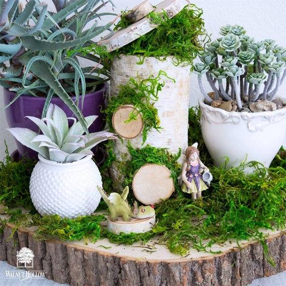 Birch Pillar Fairy House and Tabletop Garden