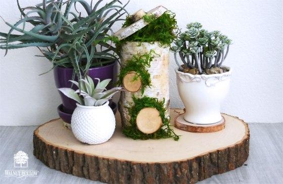 Tabletop Fairy Garden