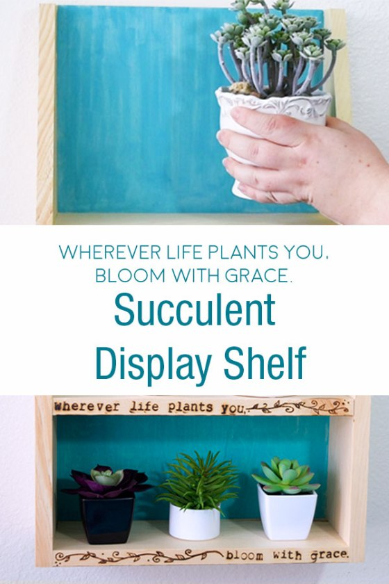 Succulent Display Shelf - Wherever Life Plants You, Bloom With Grace. #walnuthollow #plants #succulents #shelfie