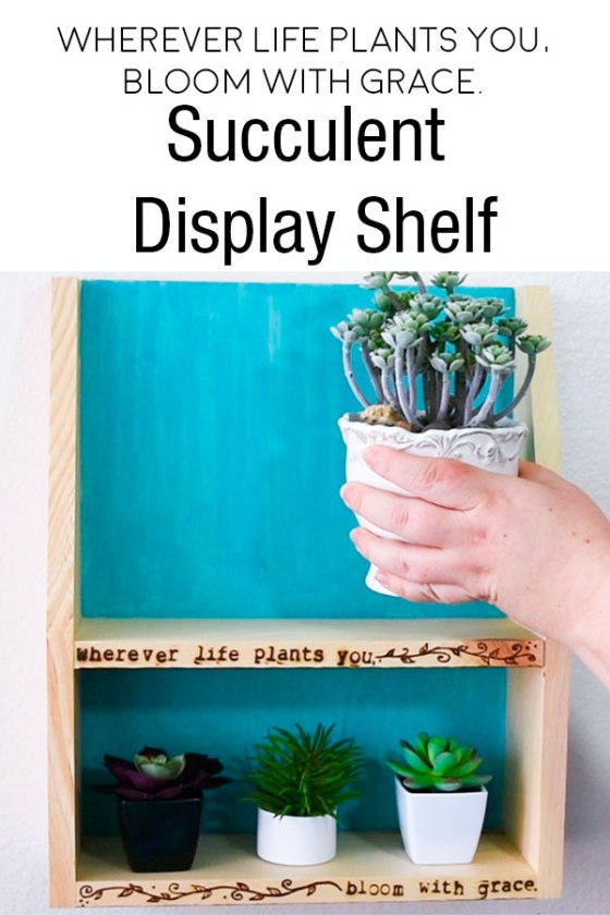 Succulent Display Shelf - Wherever Life Plants you, Bloom with Grace #walnuthollow #plants #succulents #shelfie