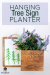 DIY Hanging Tree Sign Wall Planter with wood burned design.